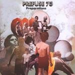 PREFUSE 73