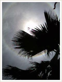 太陽を囲む虹のような輪