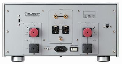 LuxmanM-800Arear.jpg
