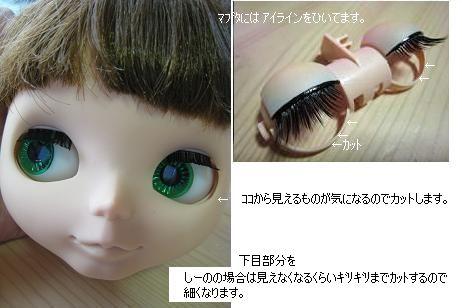 20070204210538.jpg