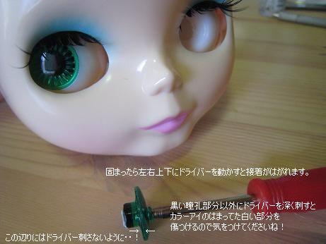 IMG_1693.jpg