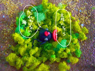 クロシヨちゃん1