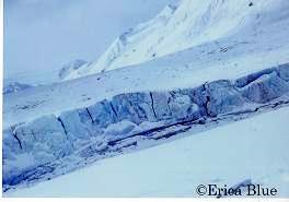 氷河崩落断面