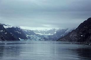 ジョンズ ホプキンス氷河たぶん