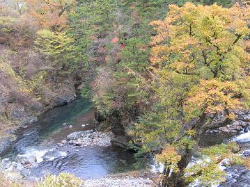色づく川渕