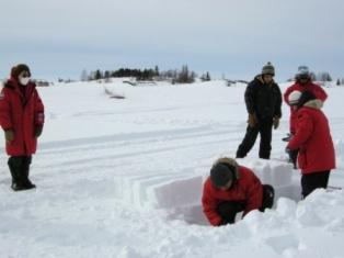 イグルー作り 雪の切り出し