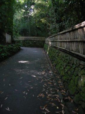 法然院への道