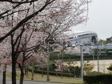 2009_0329横浜FC戦10002