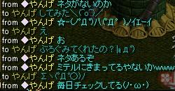 2008y09m13d_225654250.jpg