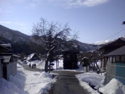 展望台からの道2