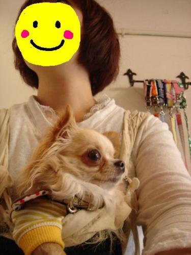 DSC05411hinakochan.jpg