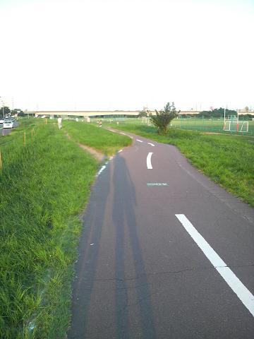 P1000218.jpg