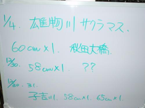 P1040297_convert_20090104204844.jpg