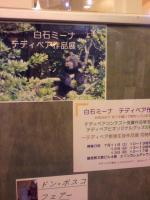 siraisimi-nasakuhinten_convert_20090713030443.jpg