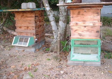 スズメバチ予防器