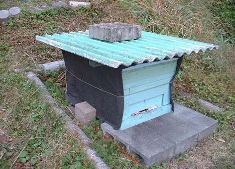 巣箱の覆い(越冬用)