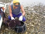 イシグロ漁