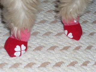 小麦の靴下