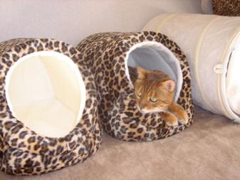 豹柄ドーム型ベッド