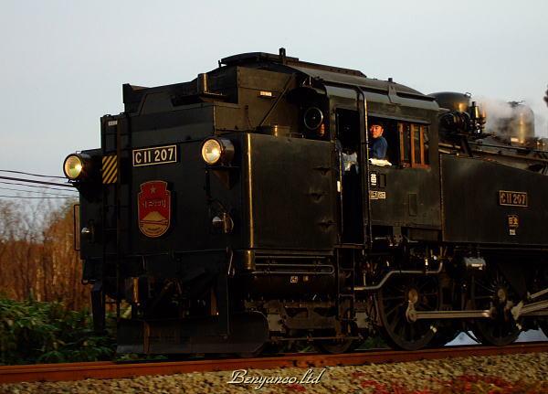 r565.jpg