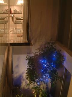 LED2.jpg