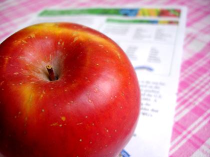 apple110405