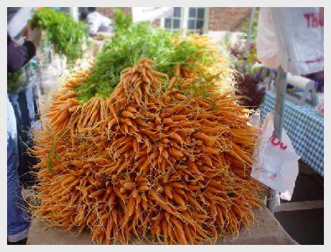 carrots050905.50.jpg