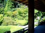 japanesegarden6.100305