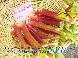 rhubarbmarket042605.50.jpg