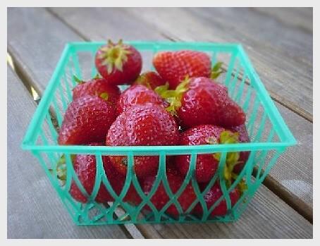 strawberries050405.50.jpg