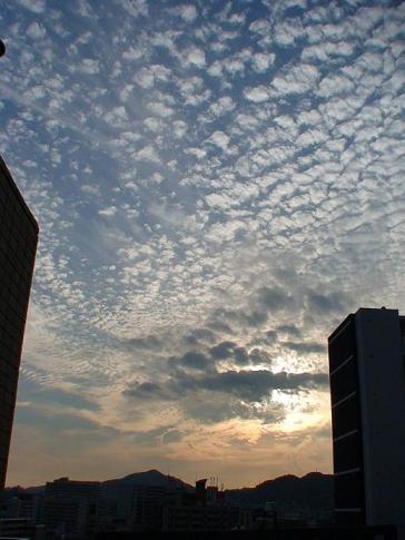 うろこ雲は天気が崩れる前兆なんですって!