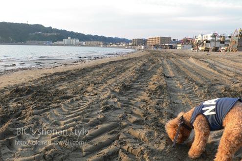 逗子海岸,散歩