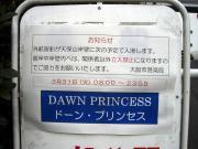 dawnprincess-14.jpg