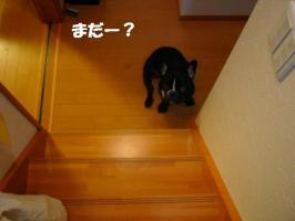 20061023001349.jpg