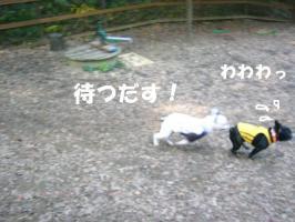 20061107143415.jpg