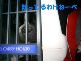 20061112230359.jpg