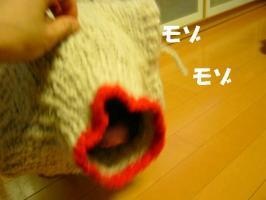 20070111230214.jpg