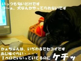 20070115001811.jpg