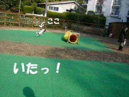 20070201203718.jpg
