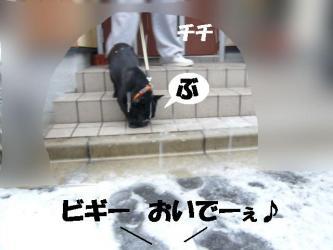 yuki3.jpg