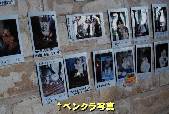 miuracafe14.jpg