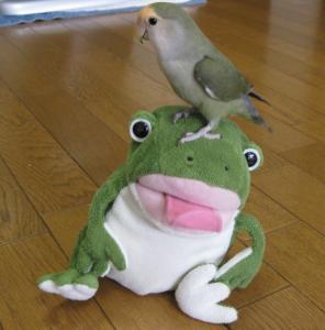 あいちゃんカエルちゃんと2