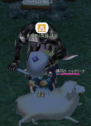 2009080302.jpg