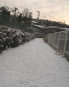 雪上にて1