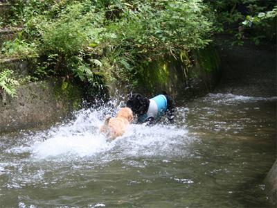 ビバ!夏08