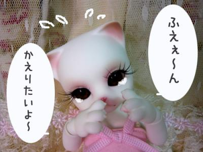 zuzu003.jpg