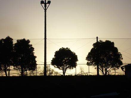 夕日の逆光テスト