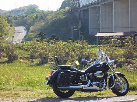 阪和道側道にて