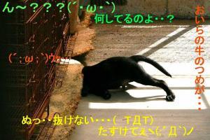S-頭が・・