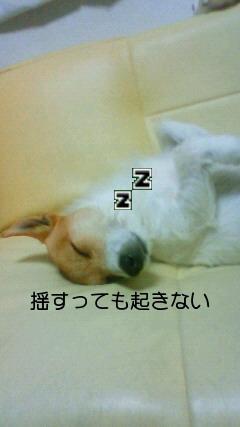 NEC_0074.jpg